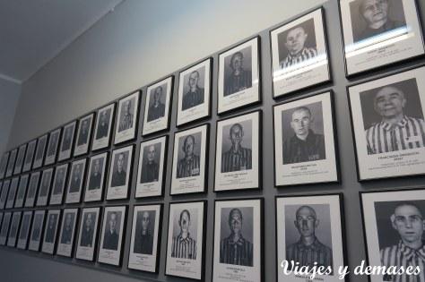 Son varios los pabellones que muestran cientos de fotos de prisioneros polacos.