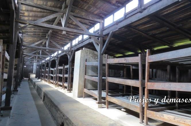 Una de las barracas que se pueden vivitar.
