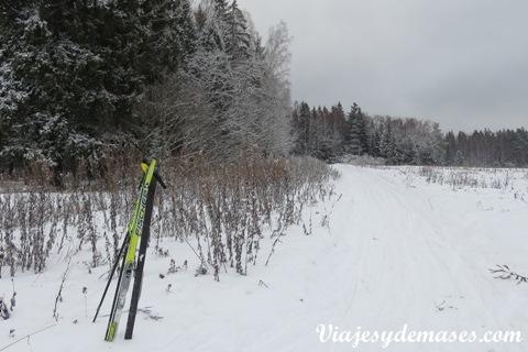 Paisaje Esquí de fondo