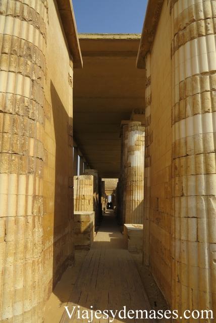 Las columnas representan los troncos de las palmeras.