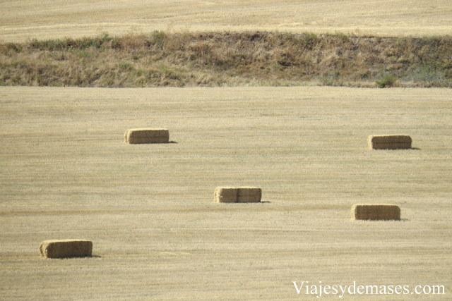 Segovia, campos de trigo.